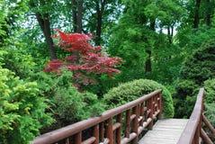 Bridge in a garden. Photo of small decorative bridge in a garden Royalty Free Stock Image
