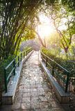 Bridge in the garden Royalty Free Stock Photo