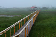 Bridge through grass Royalty Free Stock Photo