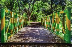 Bridge green and yellow between the viewer and the nature. Conceptual Stock Photography
