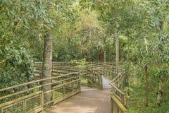 Bridge at Iguazu Park Argentinian Border Stock Image