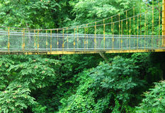 Bridge inside forest at the river. Suspension bridge inside forest area Stock Photo