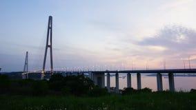 Bridge on island Russkiy. Night view of the bridge to the island Russkiy stock footage