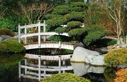 Bridge in Japanese Garden Stock Images