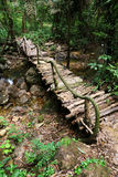 Bridge in jungle Royalty Free Stock Photography