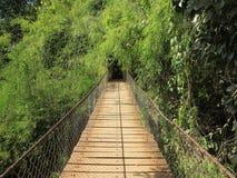 Bridge at Ka Chang waterfalls Royalty Free Stock Photography