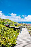 Bridge in Kenting National Park Royalty Free Stock Photos