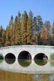 Bridge on the lake. Bridge having beautiful reflection on the lake in autumn Stock Photo