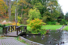 Bridge and lake at autumn park Royalty Free Stock Photos
