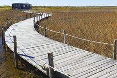 Bridge in the lake Royalty Free Stock Images