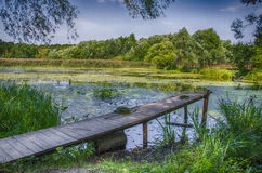 The bridge at the lake. In the Park Royalty Free Stock Images
