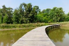 Bridge with lake and plants Stock Photo