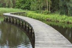 Bridge and lake Royalty Free Stock Photo