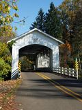 Bridge_Larwood coberto Foto de Stock Royalty Free