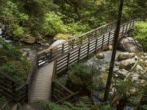 Bridge leading journey into woods Royalty Free Stock Image
