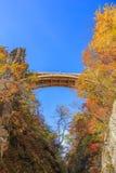 Bridge with leaves turning color in autumn in Naruko Gorge - Osaki, Miyagi, Japan stock photography