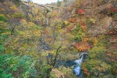 Bridge with leaves turning color in autumn in Naruko Gorge - Osaki, Miyagi, Japan stock photo