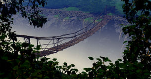 Jungle Bridge Stock Photography