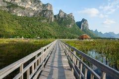 Bridge. On swamp in Sam-Roi-Yot National park. Prachuap Khiri Khan Province. Thailand Royalty Free Stock Images