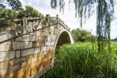 Bridge on the lotus pool Stock Image