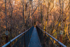 Bridge in Lullwater Park, Atlanta, USA. Steel span bridge in the Lullwater Park, Atlanta, USA Royalty Free Stock Images