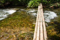 Bridge made of bamboo used for crossing streams. Royalty Free Stock Image
