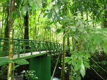 Bridge in a Magic river in Guapiles, Limón , Costa Rica. Rainforest. Costa Rica is a magic Country. This picture shows a  metalic bridge in a river in the Stock Photos