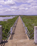 Bridge on marsh in Thailand Royalty Free Stock Images