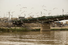 Bridge martyrs in Baghdad Royalty Free Stock Photos