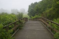 Bridge and Meadow Royalty Free Stock Photo