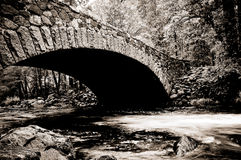 Bridge, Merced River, Yosemite Royalty Free Stock Photos