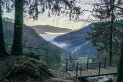 Black Forrest Valley with fog light from sun in the evening winter feeling stock photos