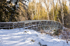 Bridge in Mission Creek Royalty Free Stock Image