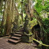 Bridge at Monkey Forest Sanctuary in Ubud, Bali, Indonesia Stock Images