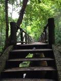 Bridge. In the mountain Royalty Free Stock Photo