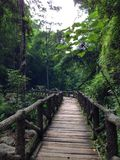 Bridge. In the mountain Royalty Free Stock Photography