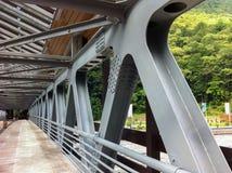 The bridge through the mountain river Royalty Free Stock Photo