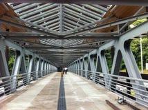The bridge through the mountain river Royalty Free Stock Photos