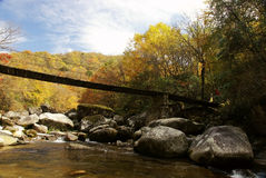 Bridge mountain stream and forest Stock Image