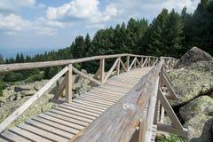 Bridge in the mountain Royalty Free Stock Image