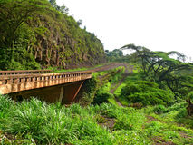 The bridge in the mountains. Tanzania, Africa. Royalty Free Stock Photo