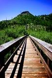 Bridge at Mt St Helens Stock Images