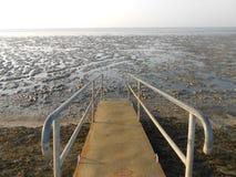 Bridge in the mudflat Stock Photography