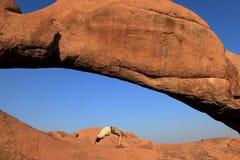 The Bridge in Namibia Royalty Free Stock Photo