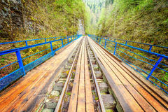 Bridge with the narrow gauge railway. Stock Photo