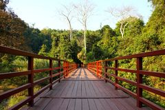 Bridge in national park, Thailand. Royalty Free Stock Images