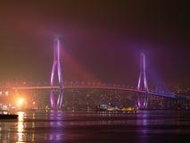bridge natten Royaltyfri Bild