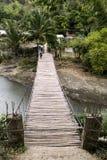 Bridge in nature Stock Images