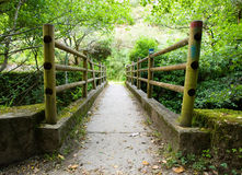 Bridge in nature Royalty Free Stock Images