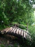 Bridge in nature. Looks very good. green background looks great combined old bridge Stock Image